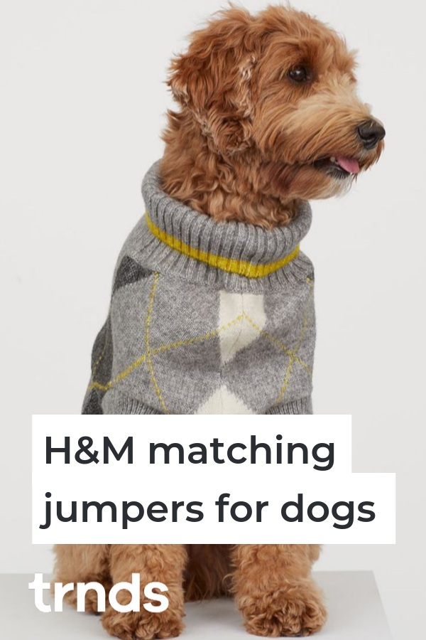 Hm-dog-clothes-collection