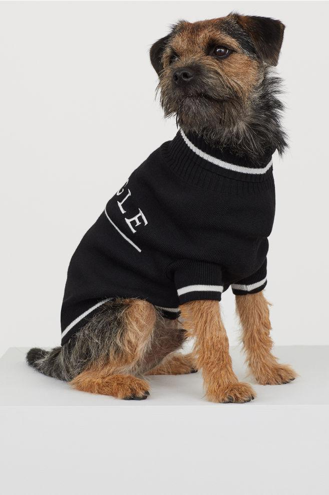 HM-x-Pringle-dog-collection-3