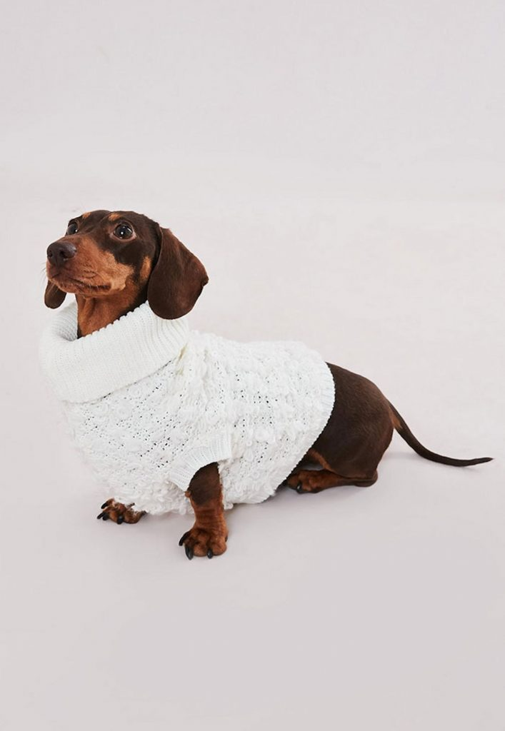 missguided-dog-sweaters-matching-white