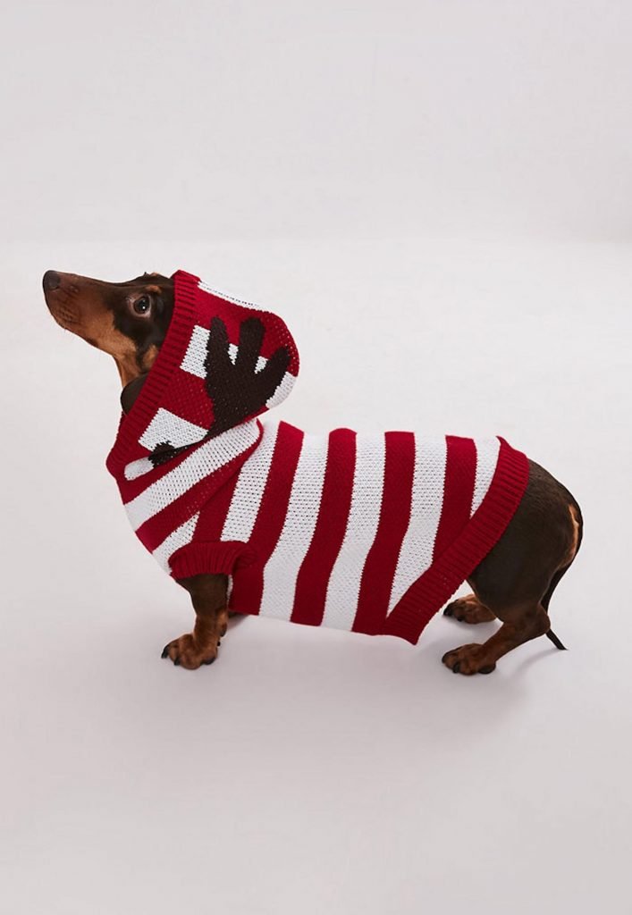 missguided-knitwear-matching-dog-sweaters-Christmas