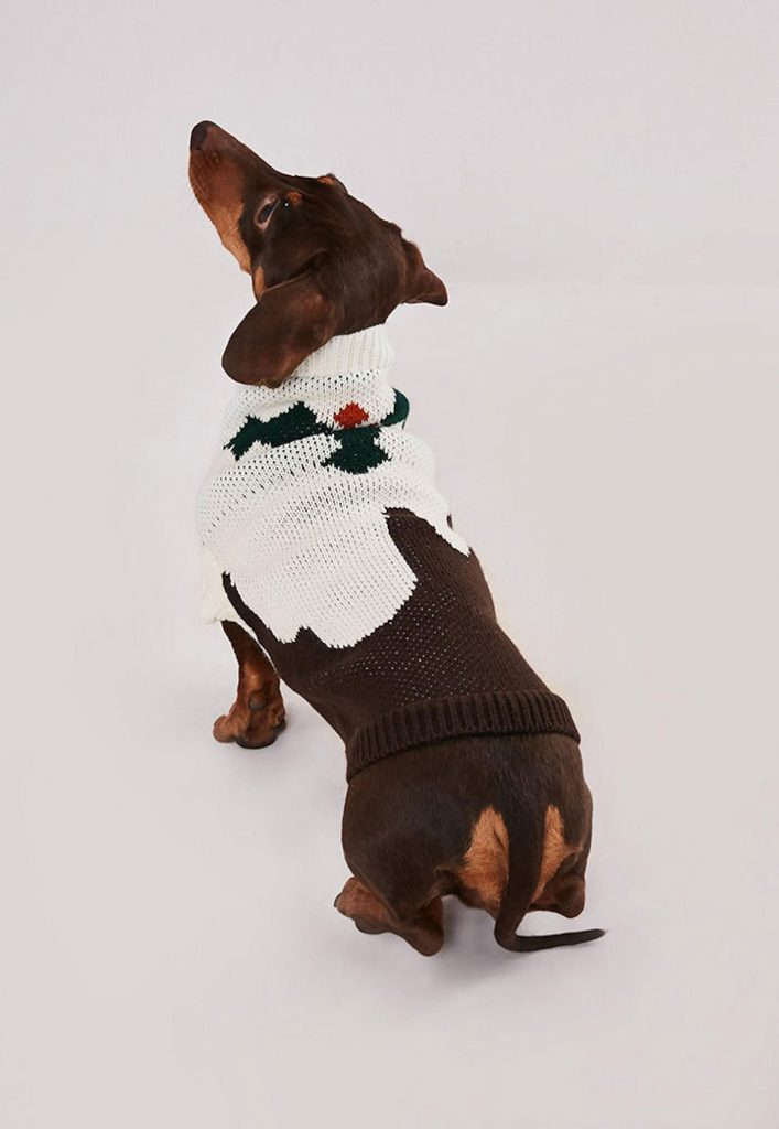 missguided-matching-dog-sweaters-christmas-version
