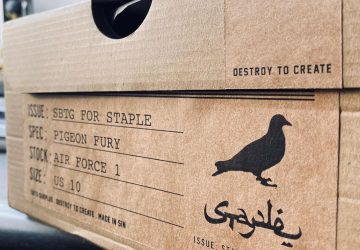 jeff-staple-sbtg-nike-air-force-1-pigeon