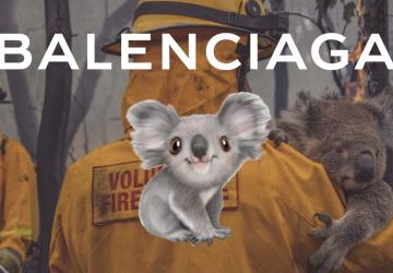 Balenciaga-koala-collection-to-help-australia-bushfire-disaster