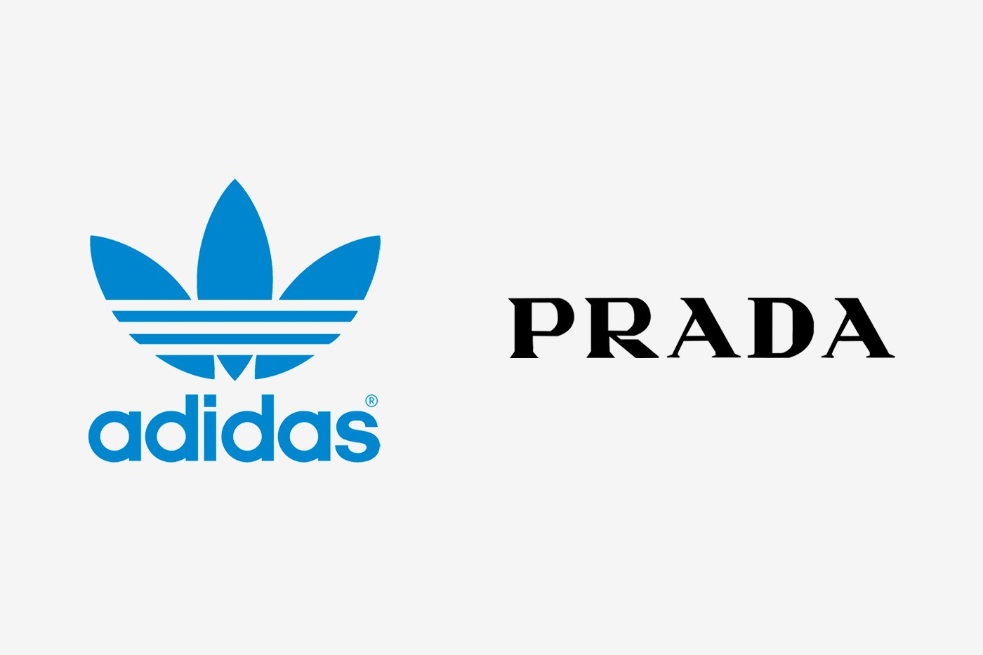 Prada adidas superstar 2020