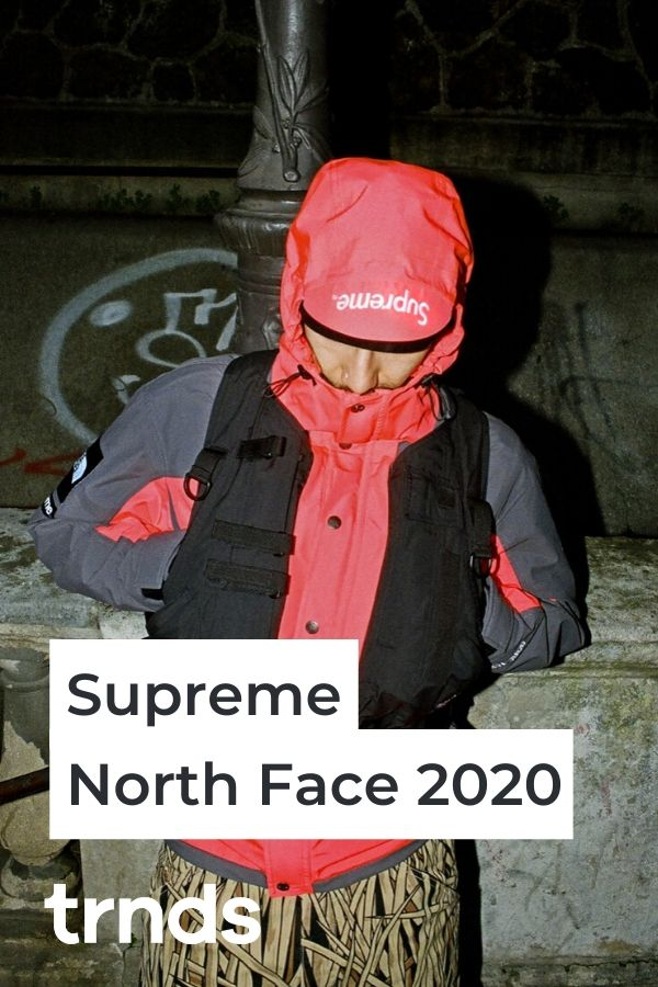 supreme-north-face-ss20-RTG